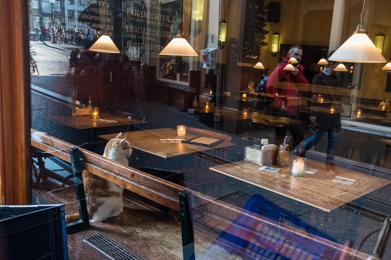 Amsterdam - Torensteeg - Café van Zuylen