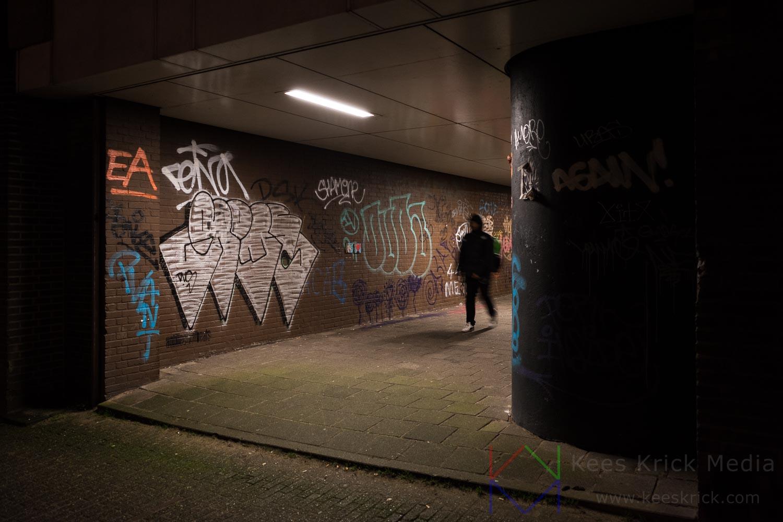 Amsterdams Steegje