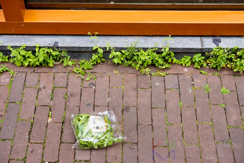 Amsterdam Negen Straatjes Krop Sla Ligt Op Straat